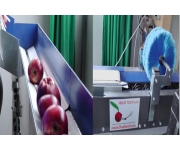 Linee di lavorazione Fruit Tech Nuovo